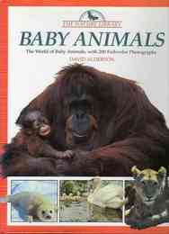 Nature Library: Baby Animals 動物の子供洋書