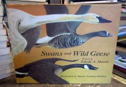 Swans and Wild Geese