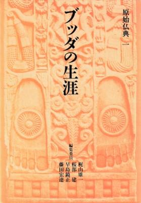 原始仏典 全10冊(梶山雄一 他 編...