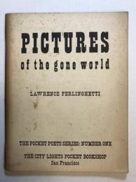 Pictures of the gone world The Pocket poets series, no. 1 (second edition)