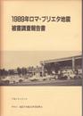 1989年ロマ・プリエタ地震被害調査報告書