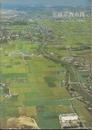 平城京西市跡-右京八条十二坪の発掘調査