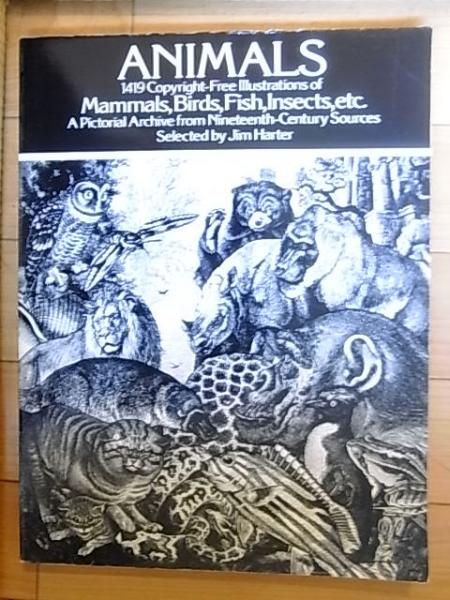 animals 1419 copyright free illustrations of mammals birds fish