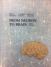 From Neuron to Brain A Cellular and Molecular Approach to the Function of the Nervous System  3rd版