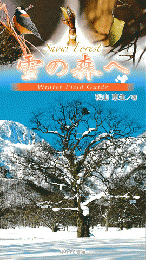 雪の森へ : winter field guide