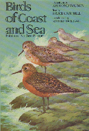 Birds of Coast and Sea  Britain and Northern Europe