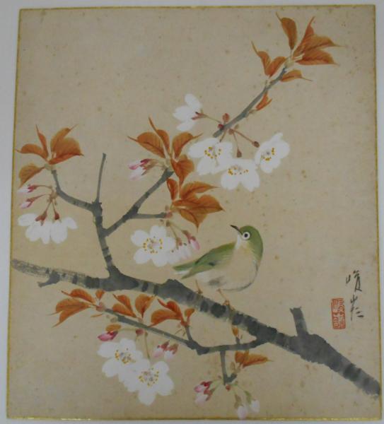 大矢峻嶺 自筆色紙「桜の枝に鶯...
