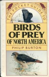 The Pocket Guide to Birds of Prey of North America