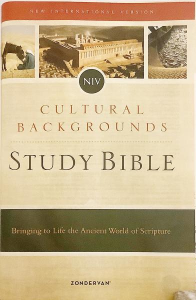 英語 キリスト教洋書】 聖書研究:文化的背景:新国際版:大活字版 ...