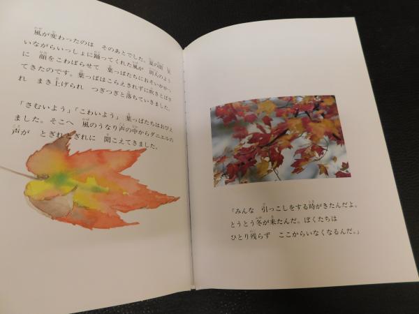 葉っぱのフレディ —いのちの旅 絵本+CD」(レオ・バスカーリア) / 古書 ...